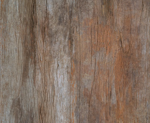 color painted old grunge wood wal, texture or vinrage wood backg