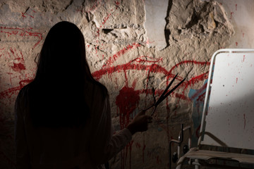 Shadowy female figure holding blade near blood stained wall