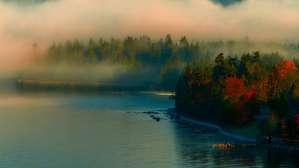Stanley park foggy morning,stanley park,English bay.Vancouver.BC ,Canada Fotomurales