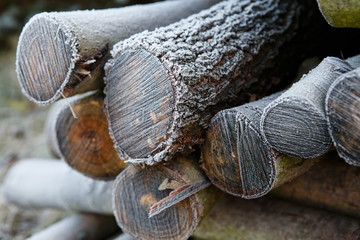 Frost on a pile of firewood