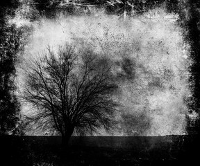 Scary Wallpaper With Tree. Abstract Dark Grunge Scratched Texture Background
