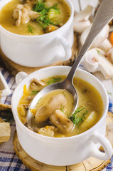Soup with mushroom with dill in white plate.