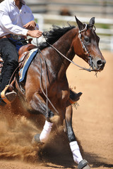 A close up view of a rider and horse sliding in the dirt