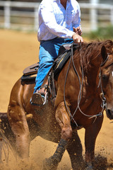 The close-up front view of a rider in cowboy chaps, boots and hat on a horseback running ahead and stopping the horse in the dust.