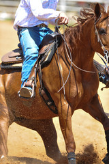 The fragment view of a rider in cowboy chaps and boots on a horseback running ahead and stopping the horse in the dust.