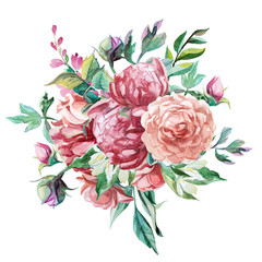 bouquet of peonies isolate on white background