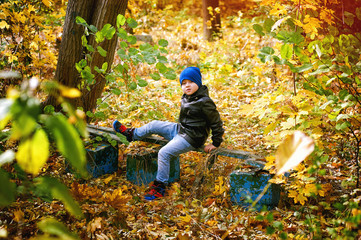 Beautiful funny boy playing in autumn Park