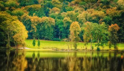 Vintage photo of beautiful early autumn european forest landscap