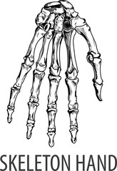 Vectors illustration of Skeleton hand