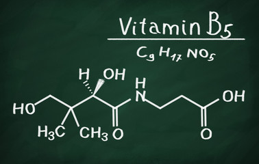 Structural model of Vitamin B5