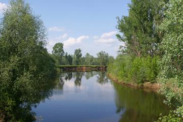 Spring walk along the river