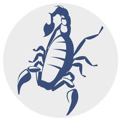 Scorpion, monocromatic icon