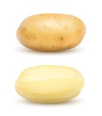 Pommes de terre vectorielles 2