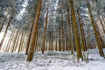 Wintereinbruch im Mittelgebirge