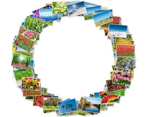 Various nature photos arranged in round frame