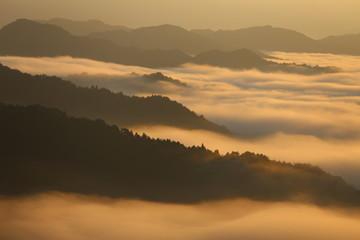 野迫川村の雲海と朝焼け