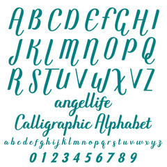 Calligraphic alphabet. Vector  numbers. Font, Typeface, Script, Old style - vintage script font. Vector typeface for labels and any type designs Hand drawn typeface. Font illustration named angellife