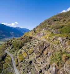 Terrazzamenti e vigneti in Valtellina - Vista panoramica sulla vallata
