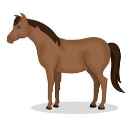 horse animal farm icon vector illustration design