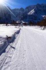 Cross Country Skiing Trail in Val Saisera (Saisera Valley) in Julian Alps. Friuli, Italy, Europe