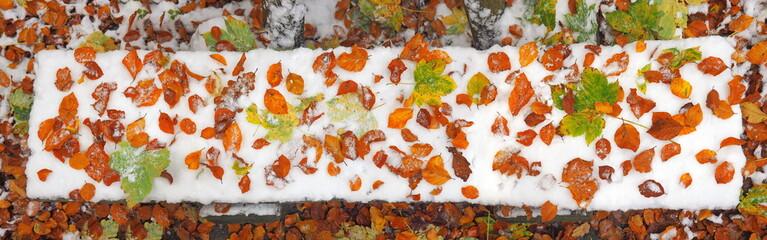Parkbank mit Herbstlaub auf Schnee