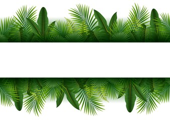 Blank sign with Tropical forest background