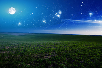 166940 green night field. star sky