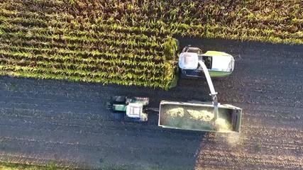 Wall Mural - Maisernte - Maishäcksler und Schlepper mit Anhänger von oben, Luftaufnahme