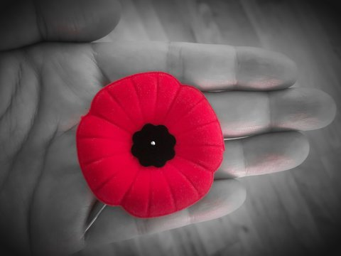 remembrance day, veteran's day, lest we forget