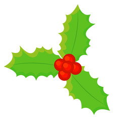 Christmas mistletoe, vector illustration, set xmas.