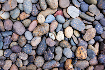 Pebbles background.Gravel background.Colorful pebbles background