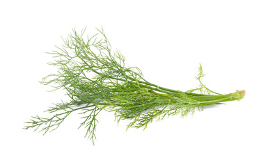 fresh dill on white background.