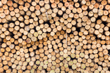 Aluminium Prints wood for foundation pile