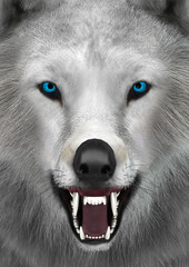 3D Rendering Arctic Wolf