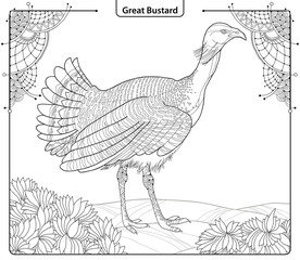 Vector illustration with male Great Bustard or Otis tarda in contour style isolated on white background with ornate corner and leaves. Outline wild bird for coloring book in line art.