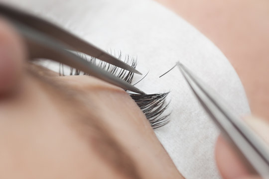 Traditional eyelash extensions. Selective focus. Toned. Makeup close-up.