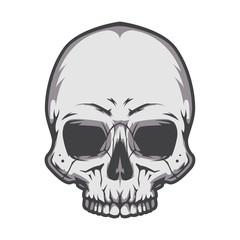 Black and white human skull. Vector illustration