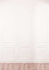 White wall decorated with stucco and molding in the style of Ren