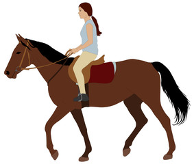 girl riding a horse - vector illustration