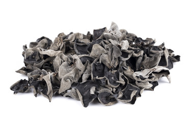Black fungus on white background.