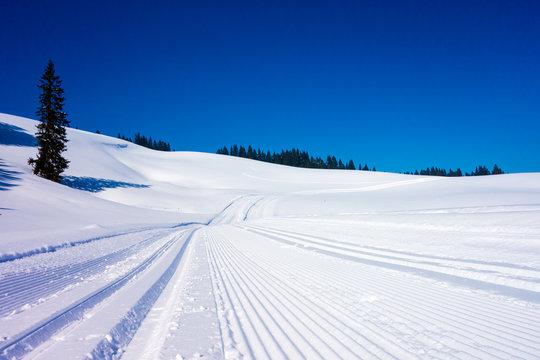 Winterlandschaft mit Loipe