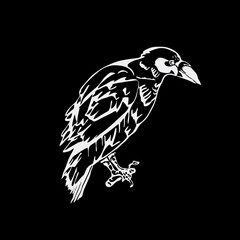 Hand-drawn pencil graphics, bird, raven, crow, rook. Linocut, stencil style.