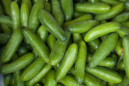 Texture of green cucumber at the market, Vietnam