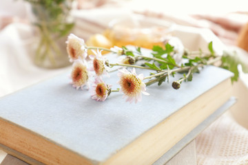 Chrysanthemum flowers lay on the book which is laying on the table. Cozy home concept