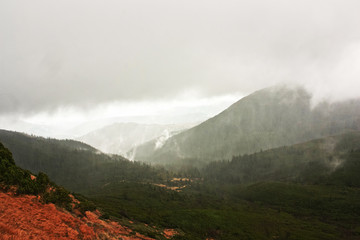 Green hills in the mountains, fog, rain.