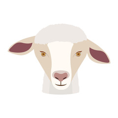 sheep icon. Animal cartoon and nature theme. Isolated and drawn design. Vector illustration