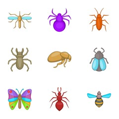 Types of insects icons set. Cartoon illustration of 9 types of insects vector icons for web
