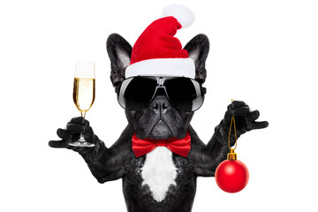Printed roller blinds Crazy dog santa claus christmas dog