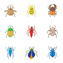 Types of bugs icons set. Cartoon illustration of 9 types of bugs vector icons for web