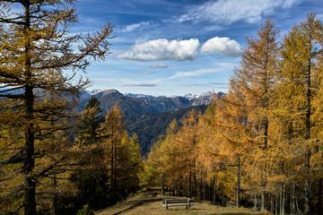 Aflenzer Bürgeralm im Herbst - Blick nach Westen